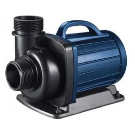 Pompe Aquaforte série DM