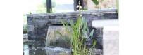 Lamier  et cascade - L'Atlantide, Aménagement de Bassin